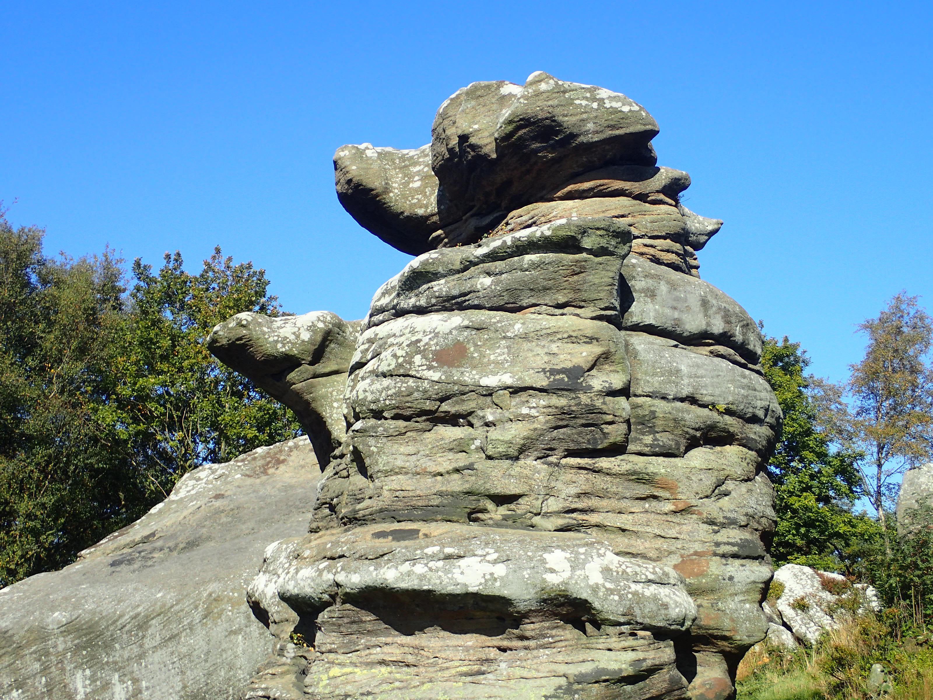 Brimham Rocks - The Dog